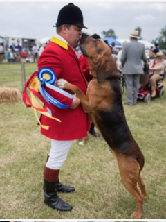 hound show pic